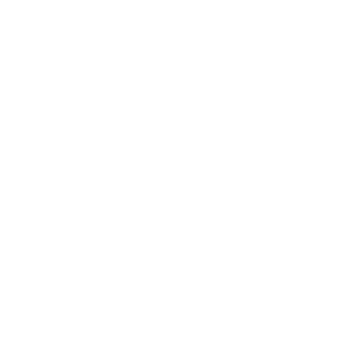 Clutch Repairs Icon